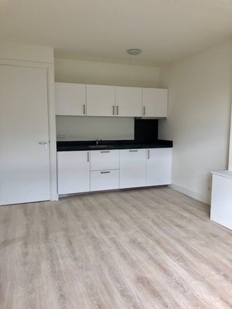 For rent: Geuzenstraat, 3023 PG Rotterdam