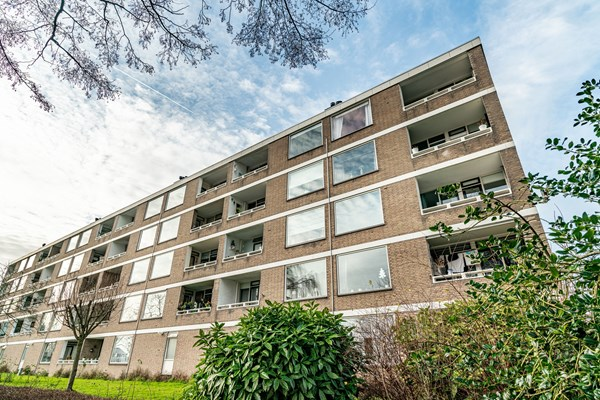 For sale: Paramaribostraat 61, 2315 VE Leiden
