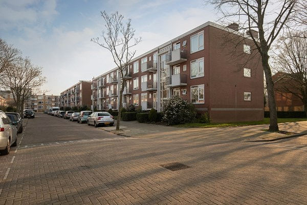 Peter Van Anrooystraat 25, Leiden