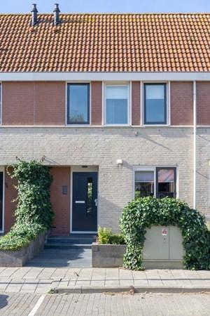 Visarend 43, Bergen op Zoom