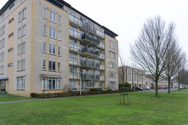 Schouw 9, Bergen op Zoom