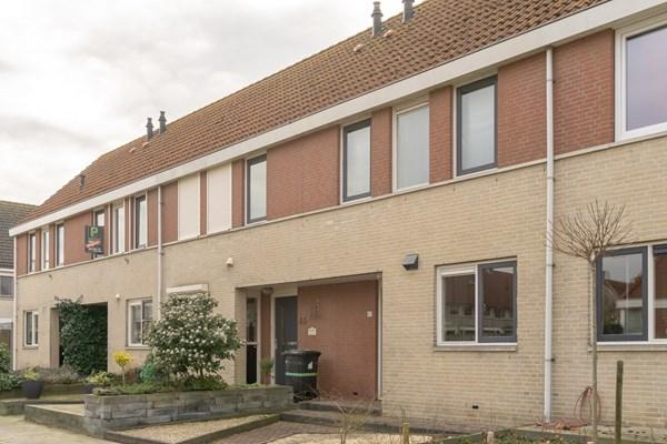 Visarend 47, Bergen op Zoom