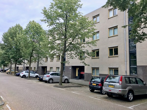 For rent: Marjoleinstraat, 1034 DS Amsterdam