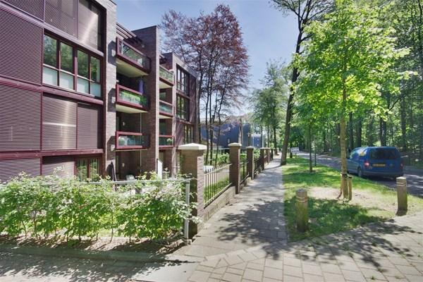 For rent: Graaf van Rechterenweg 53-14, 6861 BP Oosterbeek