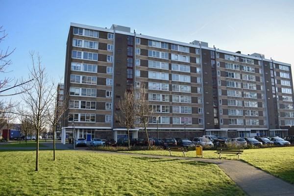 Uiverhof 20, Beverwijk