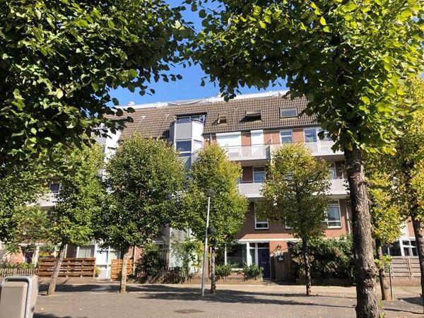 Roserije 206-E, Maastricht