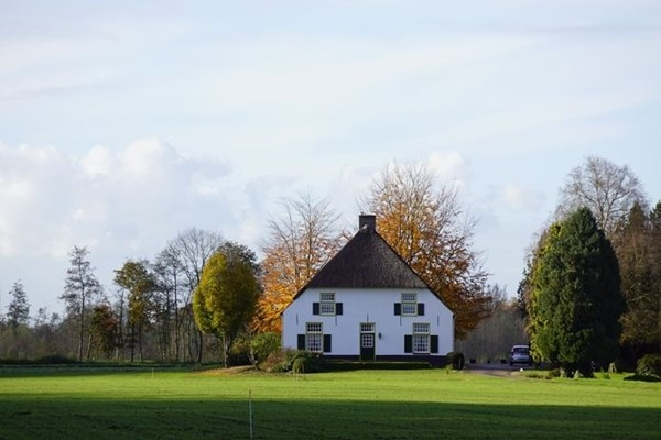Te koop: Bouwkavel voor het bouwen van een vrijstaand woonhuis / woonboerderij en landbouwgrond met een totale perc.opp. van 09.15.80 ha.