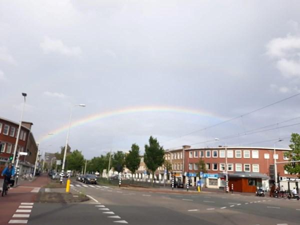 Makelaar Rustenburg Oostbroek Den Haag