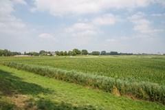 Maasdijk 25, 5321 NG Hedel