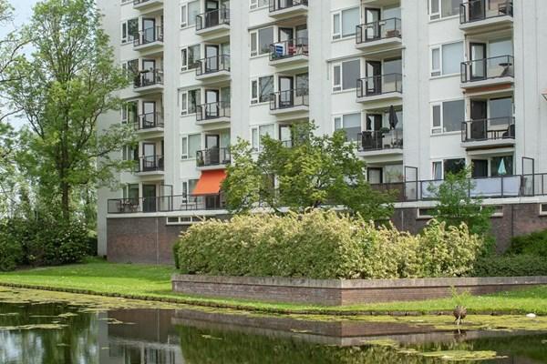 Suze Groeneweglaan 135, Rotterdam