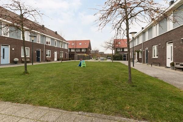 Shetland 190, Zoetermeer