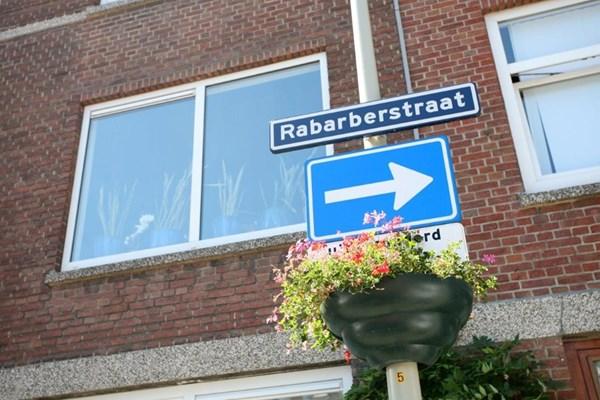 Rabarberstraat 68, Den Haag