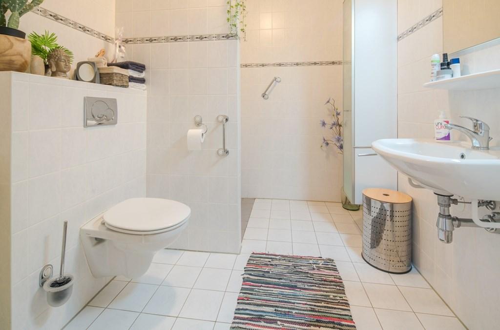 Inloopdouche Met Wastafel : Badkamer verbouwing vloerverwarming inloopdouche hangend toilet