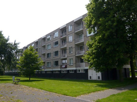 Langeplaat 125, Rozenburg