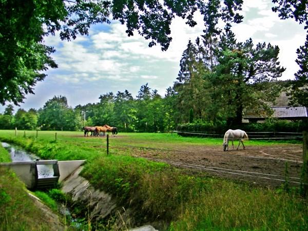 Te koop: Oosterboerweg 2a, 7943 KG Meppel