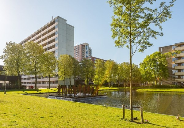 For rent: Plein 1953 103, 3086 EH Rotterdam