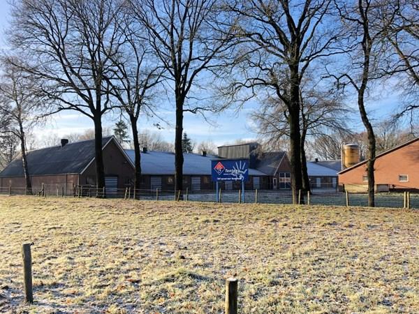 Te koop: Modern en ruim opgezet vleeskalverenbedrijf en karakteristieke boerderijwoning in Uddel op een perceel van 12.670 m2.